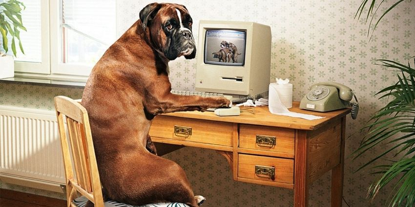 Как восстановить системные файлы Windows 7?
